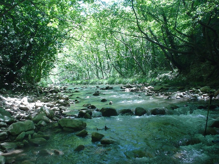 NEDA RIVER, MESINIA