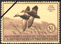 Federal Duck Stamps are vital tools for wetland conservation. Ninety-eight cents out of every dollar generated by the sale of Federal Duck Stamps goes directly to purchase or lease wetland habitat for protection in the National Wildlife Refuge System. Understandably, the Federal Duck Stamp has been called one of the most successful conservation programs ever initiated and is a highly effective way to conserve America's natural resources.