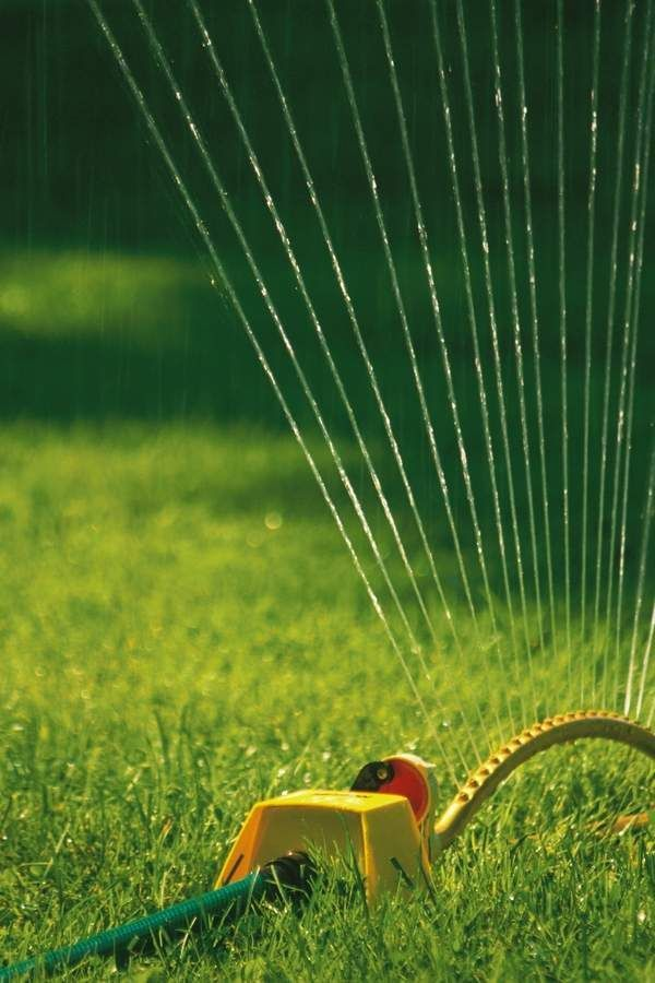 How To Installing A Diy Water Sprinkler System In A Few Simple Steps Diy Home Decor Decor Diy Home Installing Simple Sprin Rasenpflege Gruner Rasen Und Rasen