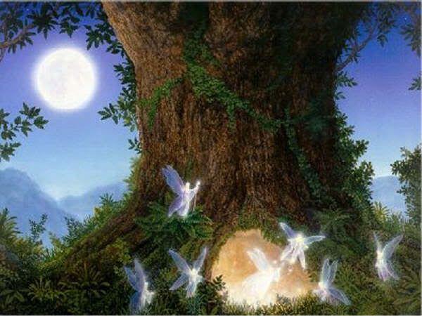 Fairies and Elves´ PICS: BOSQUE MAGICO