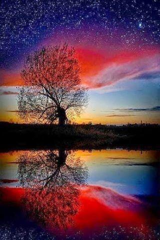 Fire in the Sky  | nature | | sunrise |  | sunset | #nature  https://biopop.com/