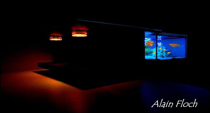 Table basse aquarium STANDING