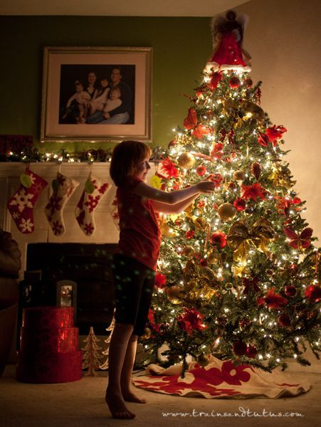 Photography 101:  How to Take the perfect Christmas Tree Photo!