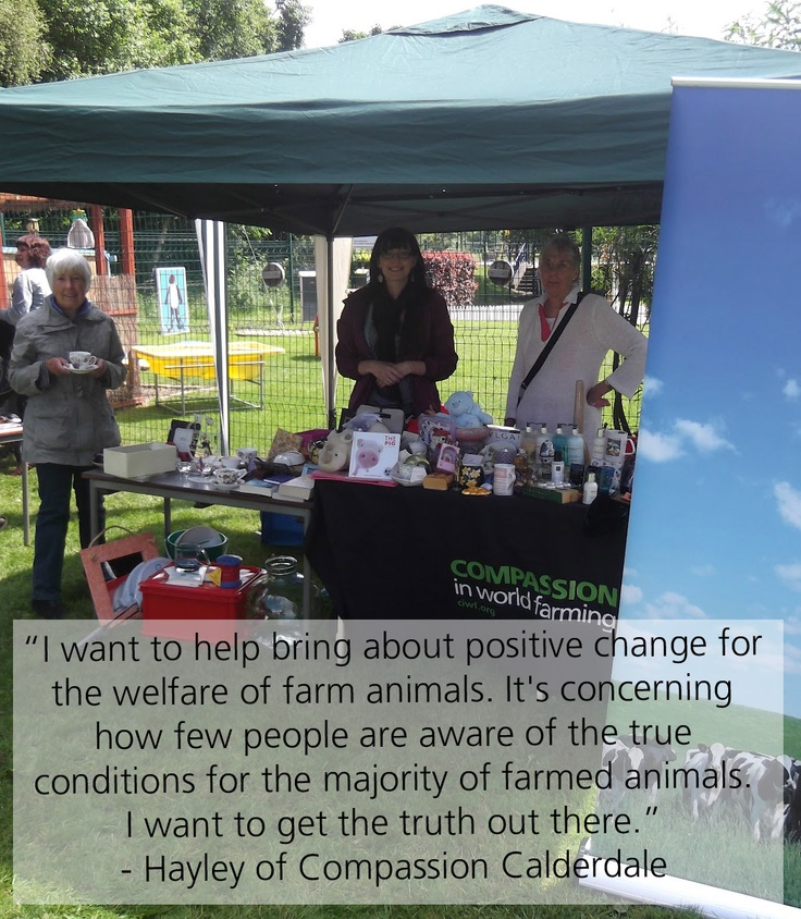 Dedicated supporter, Hayley, runs the Compassion in World Farming local group based in Calderdale. Get in touch if you would like to join a local group!