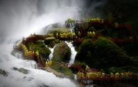 Should I be one of the tourists at this famous falls - Canada side?