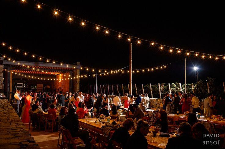 Cuatro cuatros wedding party reception viñedos Ensenada B.C.
