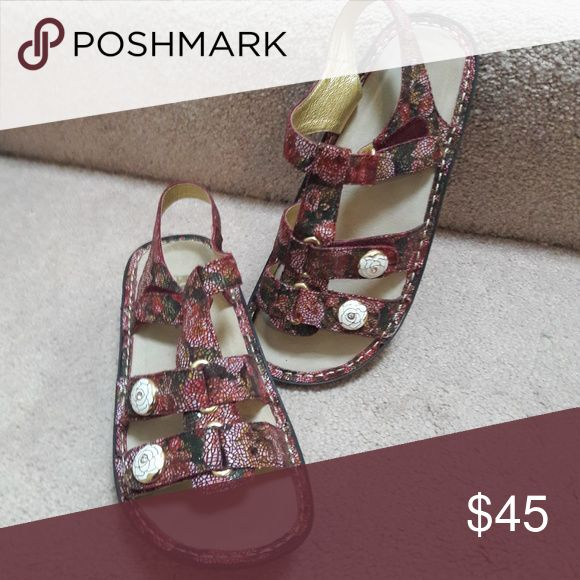 Alegria sandlas Alegria sandals with 3 adjustable Velcro tabs to make the perfect fit for you!  The pattern is a pink tones with green and 2 gold and white flower decorative buttons on the lower straps.  New, never worn. Alegria Shoes Sandals