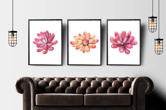 Succulent plant set 3 flowers watercolour painting cactus