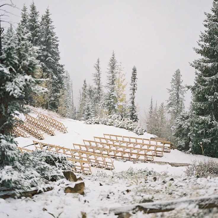 The snow fell so magically for Taylor & Cameron on The