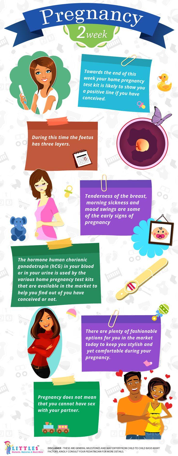 Week pregnancy week by photos