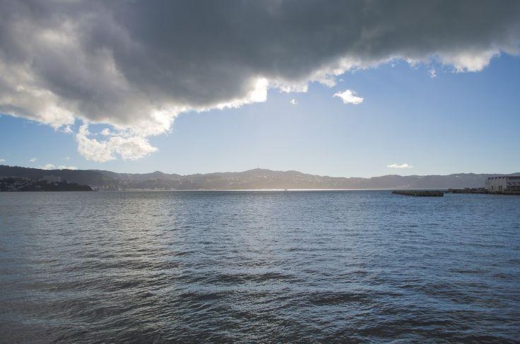 NZ_BBQ - Eugeny Glazyrin - Веб-альбомы Picasa