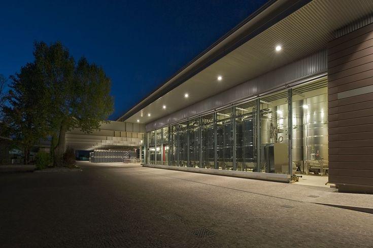 Ampliamento e rinnovo della Cantina Santa Margherita firmato Westaway Architects