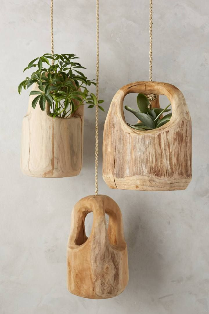 Indoor Hanging Gardens - This would be fun to carve from pieces of wood from places you've been