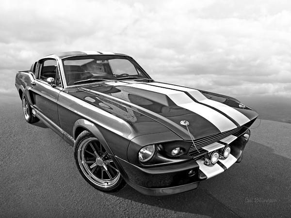 Best Ford Mustangs Images On Pinterest Ford Mustangs Html
