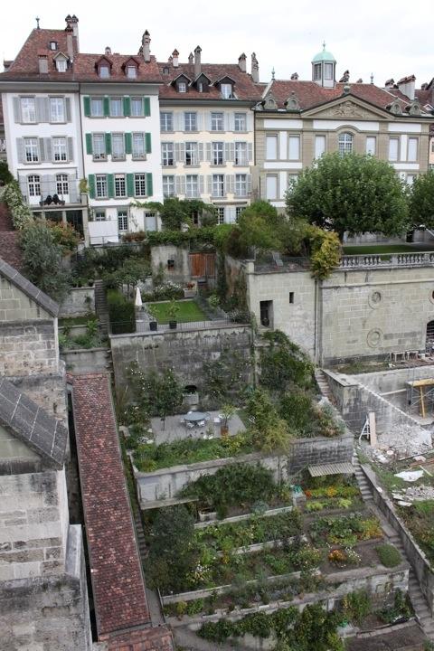 103 Best Rooftop Gardening Images On Pinterest