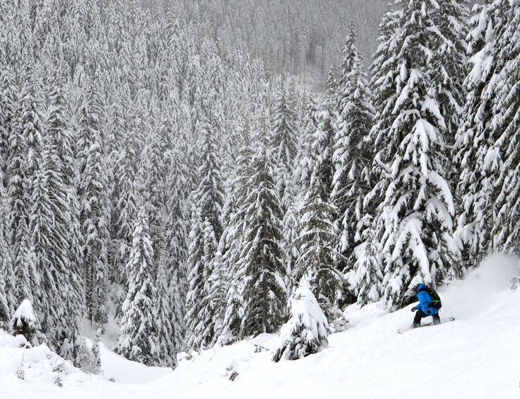 Why Jasna In Slovakia Is The Ultimate Cheap Snowboarding Destination - Mpora