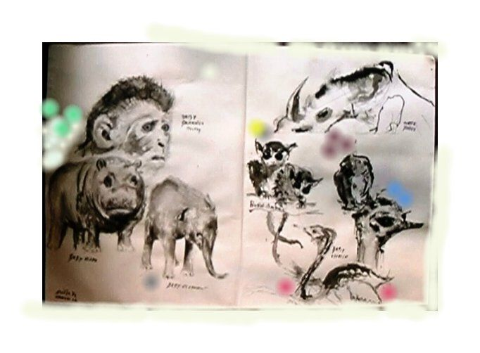 Line Drawings Of African Animals : Drawings from african animals peers and paintings