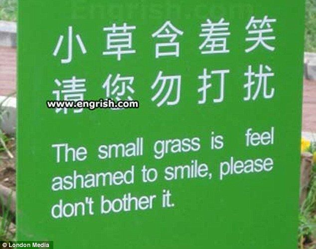 Tread lightly: Chinese people are known for their modesty but who would have guessed even the grass is ashamed to smile?
