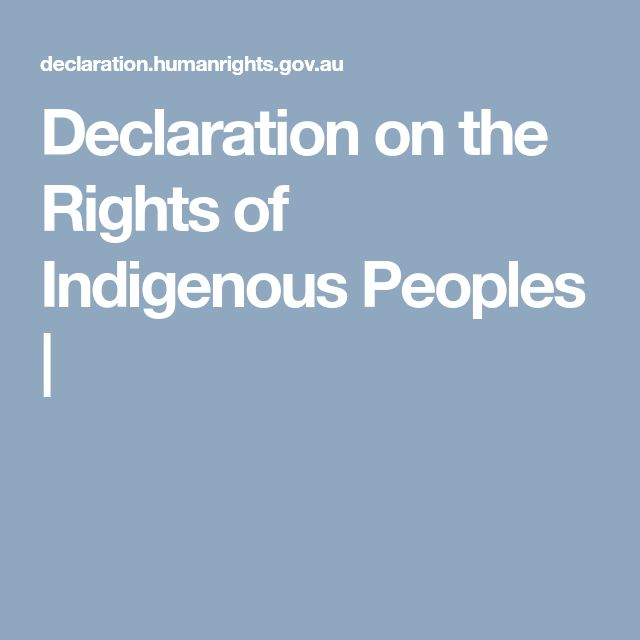 Declaration on the Rights of Indigenous Peoples |