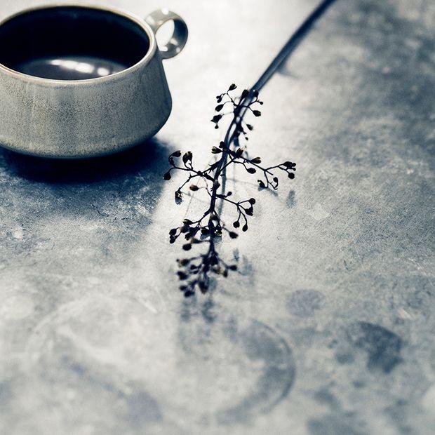 Gray Matter Cup