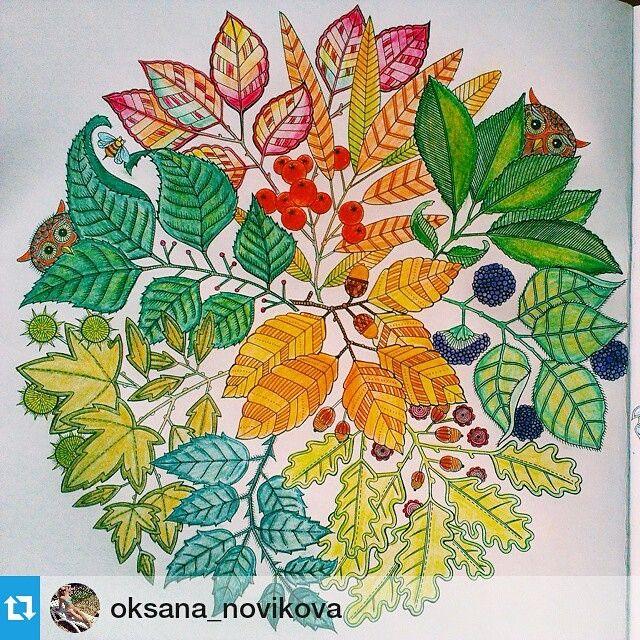 Mandala Owls Secret Garden De Corujas Jardim Secreto Johanna Basford Coloring BooksColouringSecret