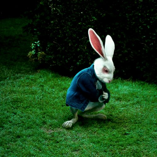 Follow The White Rabbit - Too late to die Young