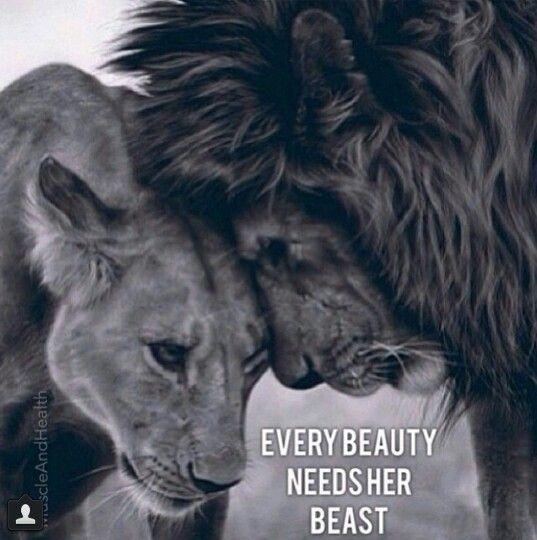 Every beauty needs a beast!   Random   Pinterest   This ...