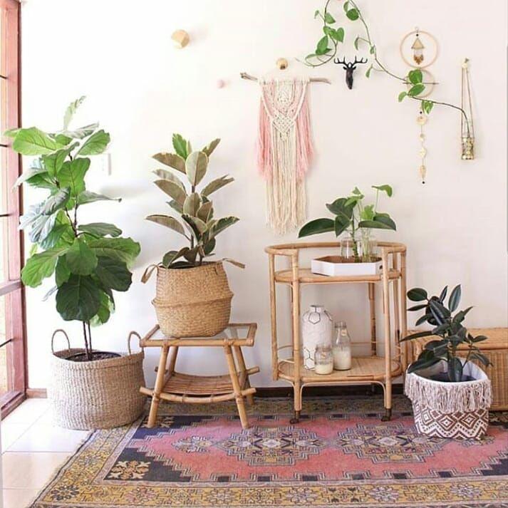 542 besten \WOHNEN Bilder auf Pinterest Zimmerpflanzen - einrichtung im karibik stil