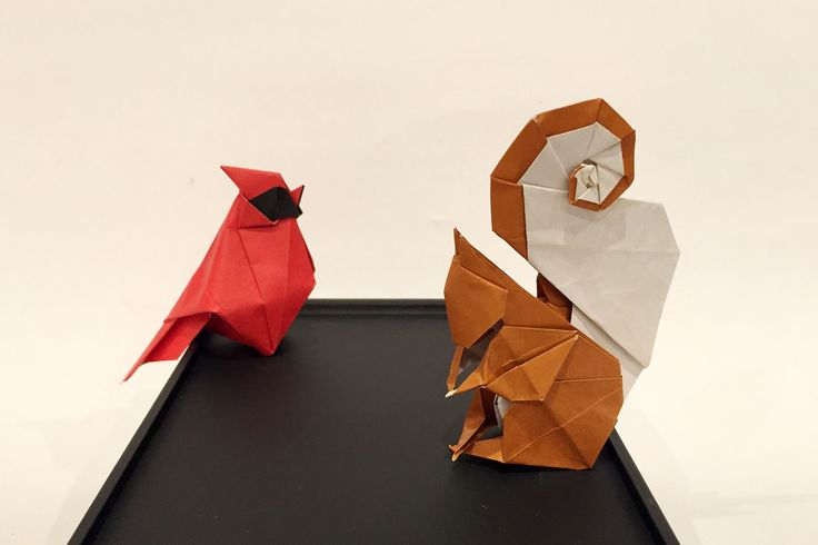 A Cardinal and A Squirrel - Beth Johnson by mmukhopadhyay