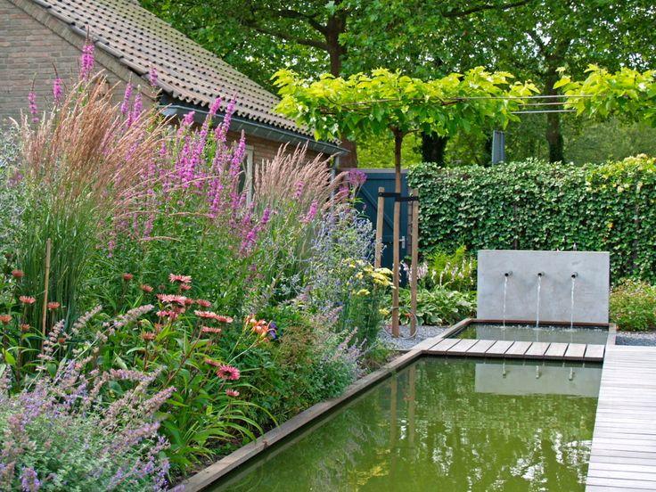9 best tuin met siergrassen images on pinterest for Tuinarchitect modern strak