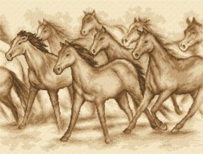 Schemat Dzikie konie
