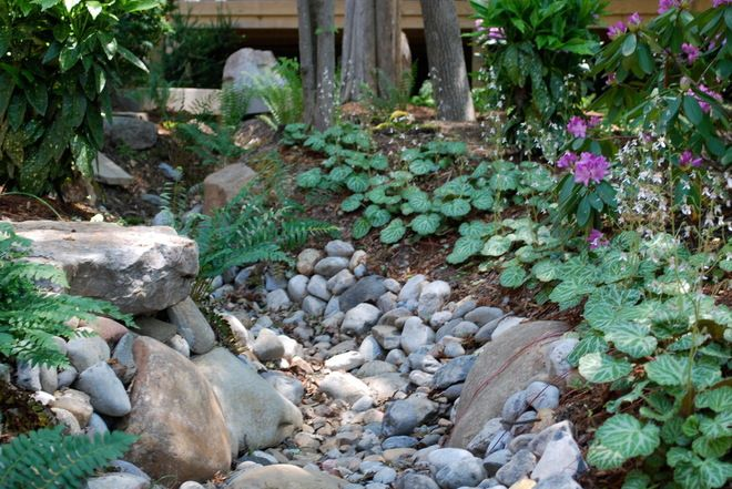 Diy Dry Creek Bed Landscaping Ideas Asian Landscape By