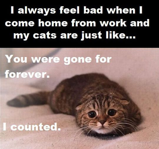 You were gone for forever…