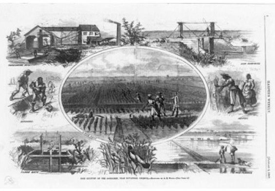 share cropping System of farm tenancy once common in some parts of the united states in the united states the institution arose at the end of the civil war out of the plantation.