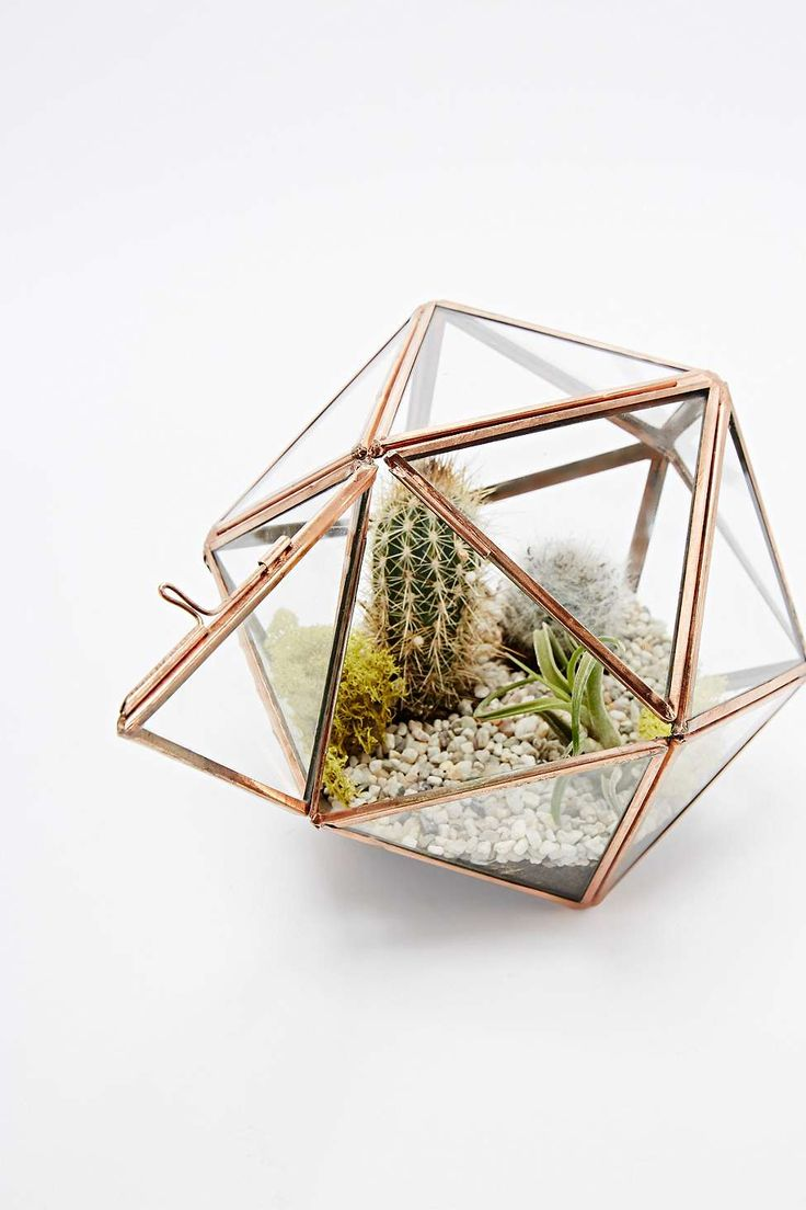 Urban Grow Copper Star Terrarium Planter