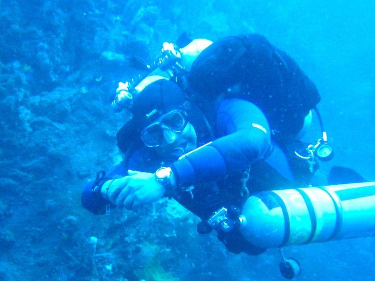 Diving adalah suatu olahraga sekaligus kegiatan rekreasi yang sedang populer saat ini. Seiring dengan banyaknya media exposure atas keindahan alam bawah laut Indonesia, semakin banyak pula  yang menekuni diving sebagai hobi.