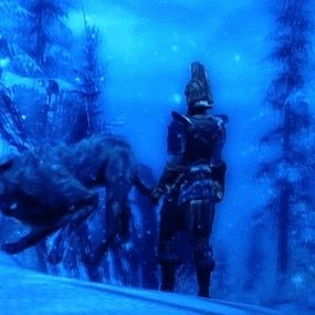 I'm so fucking disappointed to this dog #Skyrim #Gaming #ElderScrolls