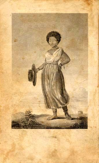 the slave narrative the history of Slave narrative six pack 4 is a mixed bag of narratives,  the history of mary prince, a west indian slave by mary prince the narrative of william w brown,.
