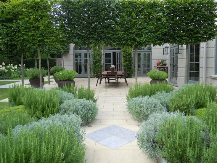 Surrey house garden by richard miers. Miers planted four raised beds of evergreen herbs—rosemary, lavender, and thyme—for use in the kitchen.