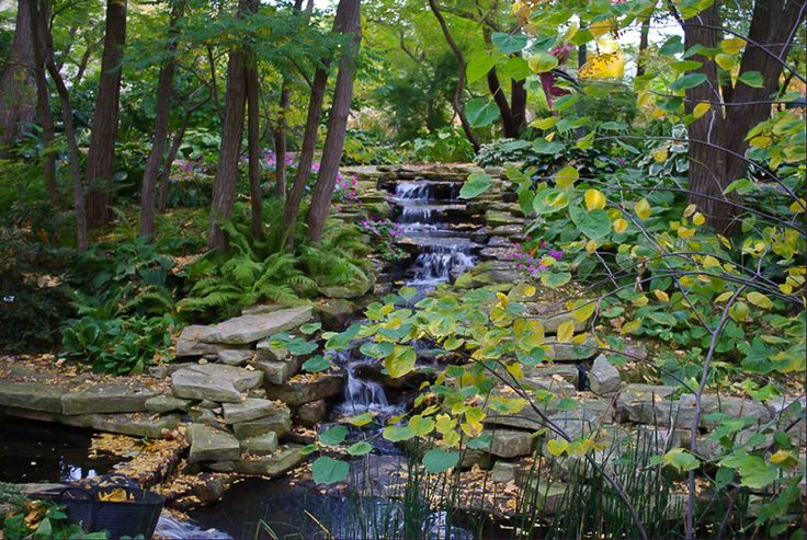 Picturesque Lauritzen Gardens Omaha  Nebraskathe Good Life  Pinterest  With Lovely Lauritzen Gardens Omaha  Nebraskathe Good Life  Pinterest  Gardens  Nebraska And Camping With Agreeable Covent Garden Cinema Also Best Price Plastic Garden Sheds In Addition Sulgrave Gardens And Wickes Garden Decking As Well As Ginger Garden Restaurant Additionally Garden Wigwam From Pinterestcom With   Lovely Lauritzen Gardens Omaha  Nebraskathe Good Life  Pinterest  With Agreeable Lauritzen Gardens Omaha  Nebraskathe Good Life  Pinterest  Gardens  Nebraska And Camping And Picturesque Covent Garden Cinema Also Best Price Plastic Garden Sheds In Addition Sulgrave Gardens From Pinterestcom