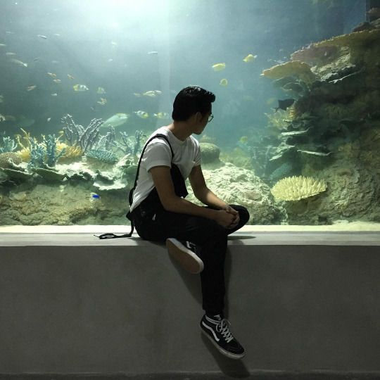 The nearest aquarium was two hours away from town but it was worth it for Andrew to get away from his dad for a while.