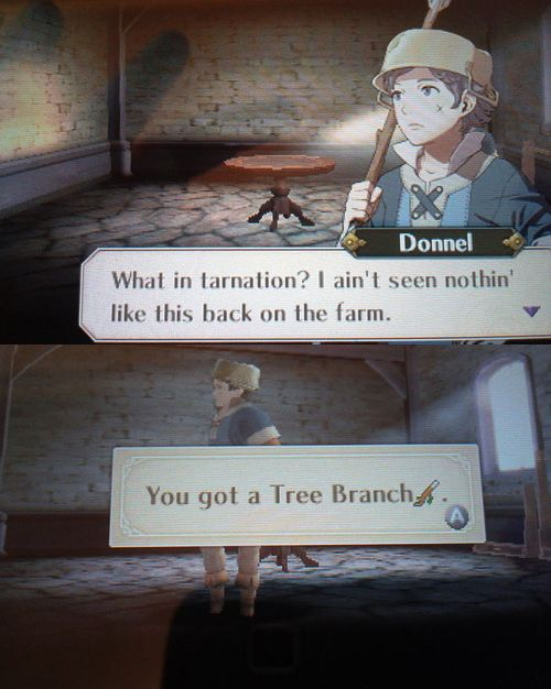 What kind of farm did you live on Donnel. (Fire emblem awakening)
