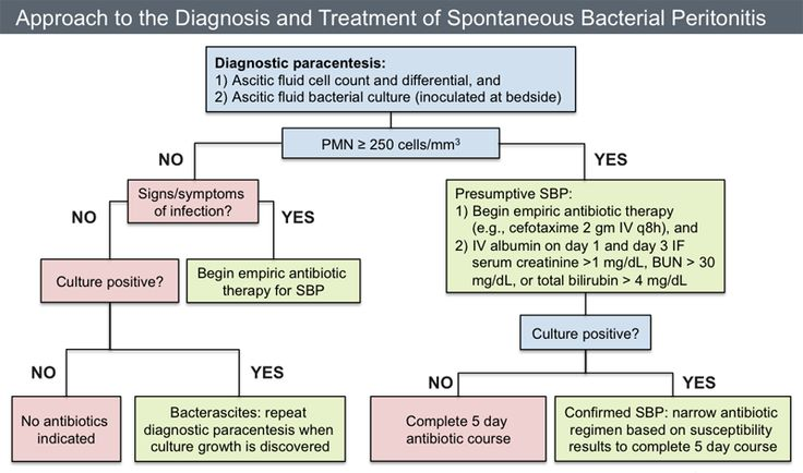This algorithm provides a general approach to the diagnosis and management of patients with possible spontaneous bacterial peritonitis. The clinician should suspect secondary bacterial peritonitis with any of the following: the patient has an inadequate response to antibiotics, more than one organism is isolated from culture, or at least two of the following ascitic fluid values are present (protein greater than 1 g/dL, LDH greater than ULN serum levels, and glucose less than 50 mg/dL). If…