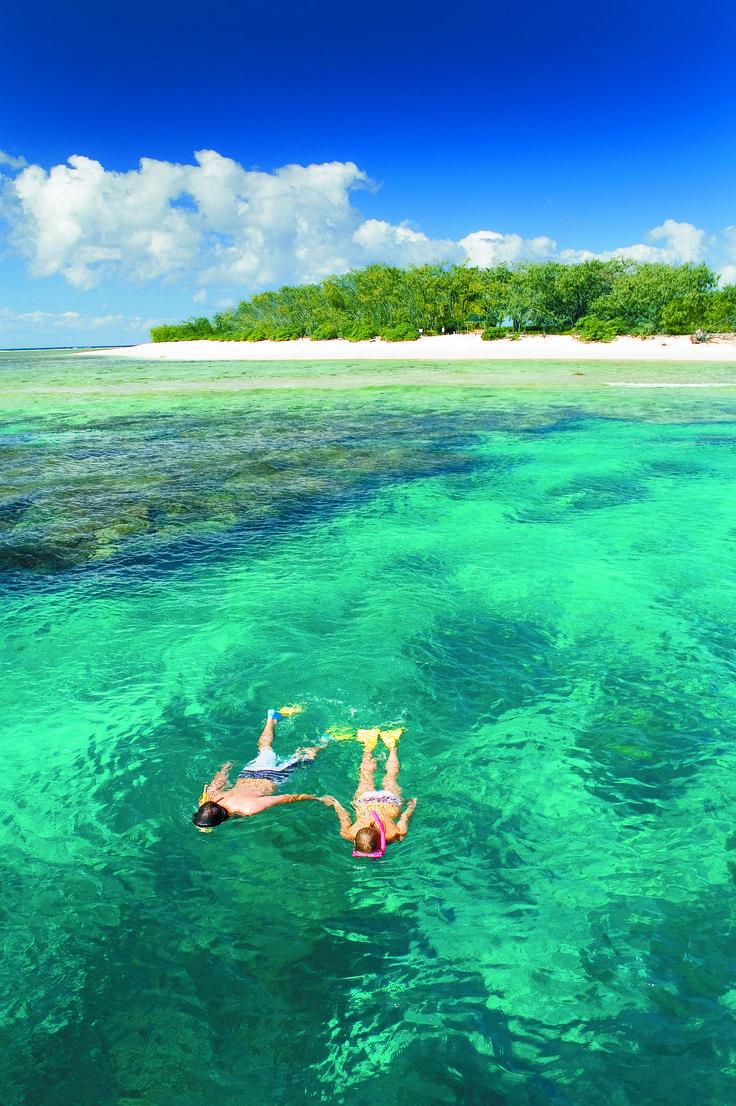 Lady Elliot Island - Snorkelling Great Barrier Reef LOVE snorkeling!!