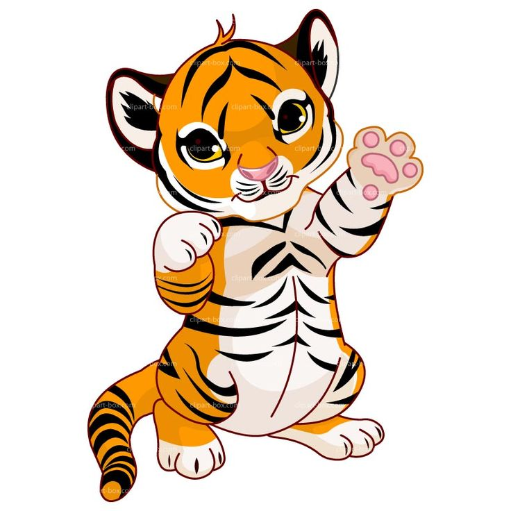 Baby tiger drawingclipart cute