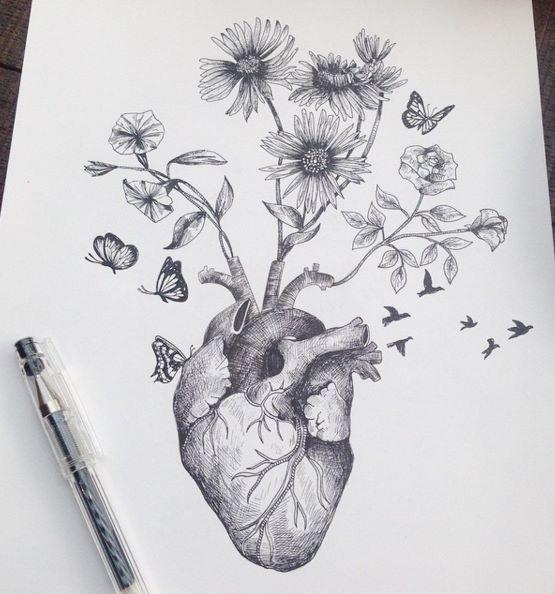 Cuore, fiori, farfalle e uccelli