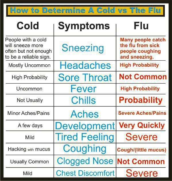 How to tell the difference between a cold or a flu. Important information for your health and wellness. Diy health info graphic symptom chart. www.praiseworks.biz.