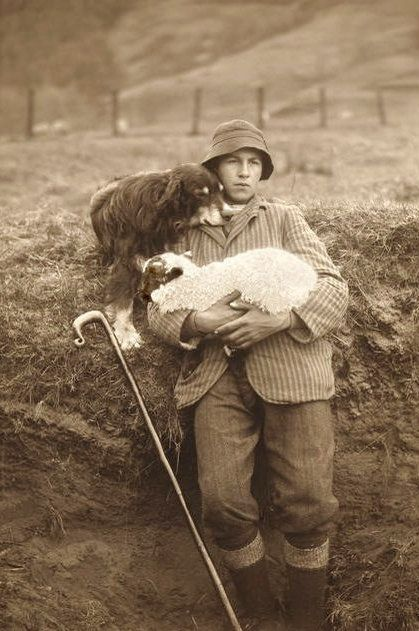 +~+~ Vintage Photograph ~+~+  Tender photograph of a shepherd holding one of his lambs while his faithful dog rests on his shoulder.