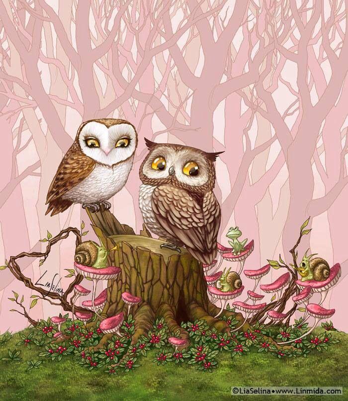 Owls                                                                                                                                                                                 More