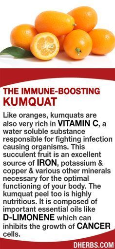 Kumquat, vitamin C and Iron source